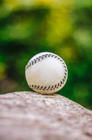 Baseball close up on rock, against green vegetation