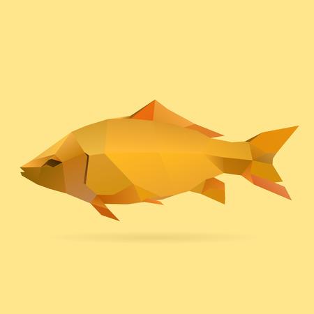 鯉の多角形の図