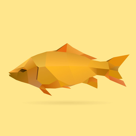 polygonal illustration of carp