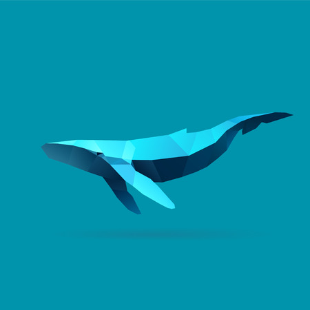 polygonal illustration of whale