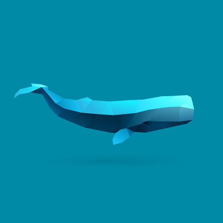polygonal illustration of sperm whale