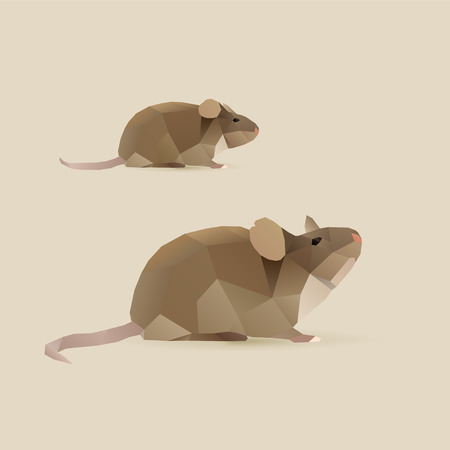 polygonal illustration of mouse