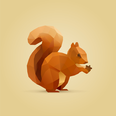 squirrel isolated: polygonal illustration of squirrel eating nut isolated