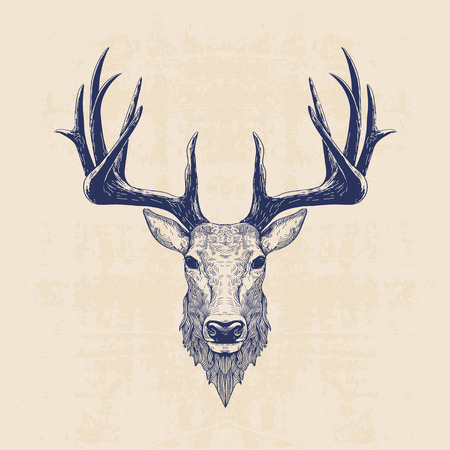 deer head, vintage hand drawn illustration Çizim