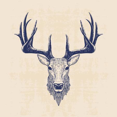 herten hoofd, vintage hand getrokken illustratie