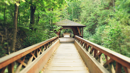 foot bridges: wooden bridge with roof, landscape, in forest in the end of summer Stock Photo