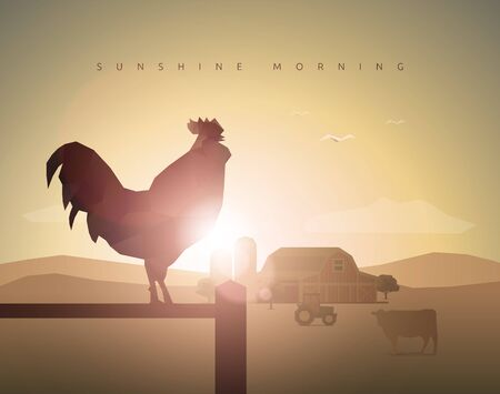 rooster at dawn: farm with rooster, sunset, sunrise, sunshine