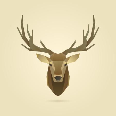 鹿頭の肖像画、多角形の図