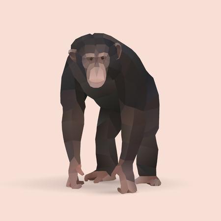チンパンジー、多角形の幾何学的な動物のイラスト