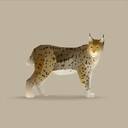 lynx lynx, norden wildcat vector illustration 일러스트