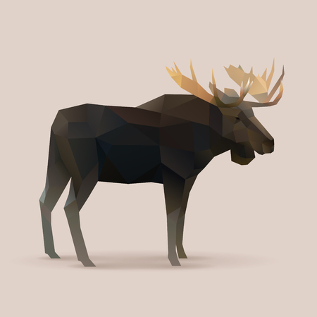 moose male Polygon vector illustration 일러스트