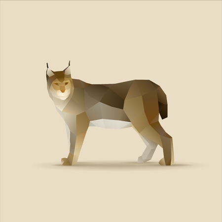 Polygonal vector illustration of lynx