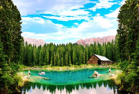 numerous: An unreal forest lake with swans. The picture composed of numerous images. Stock Photo