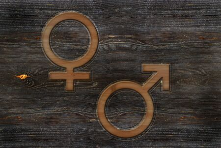 Wooden carved male and female signs  illustration.