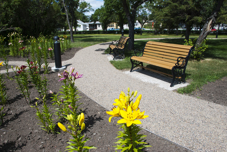 A park banch and flower in hot summer day photo