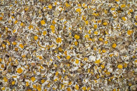 dried chamomile chamomile tea 스톡 콘텐츠