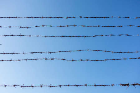blue sky and barbed wire mesh Stock Photo