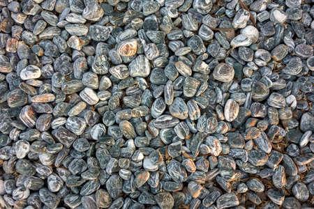 hundreds of black small pebbles 写真素材