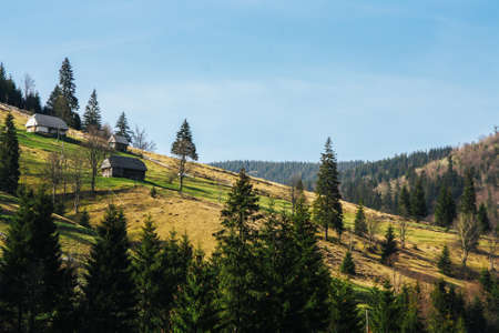 Lovely landscape of green mountain hills covered by forest with small houses. Stock Photo
