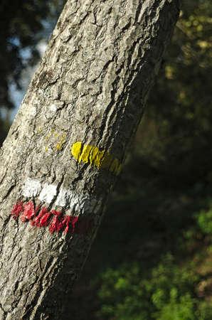 signaling: marking and signaling for hiking