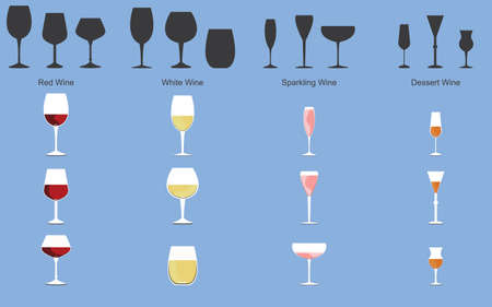 glass of wine: Types of Wine and Glasses Illustration