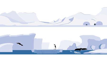 antartide: Impostare ofArctic e l'Antartide Vettoriali