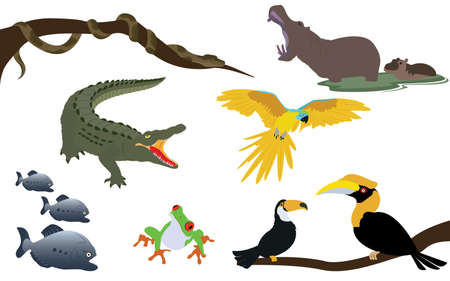 Set of Forest Jungle and River Animals Wildlife Vector