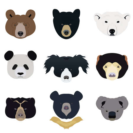 spectacled: Set of Bear and Wild Animals Vector and Icon