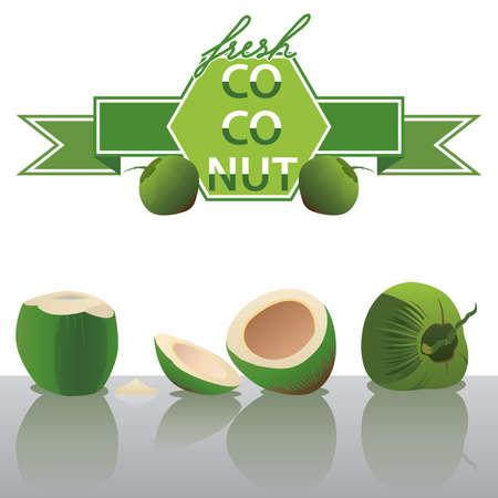 fruit drink: Vector cocco fresco Vettoriali