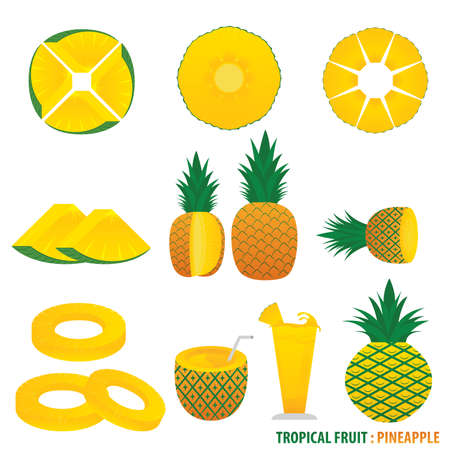 tropical fruit: Tropical Fruit Pineapple Vector