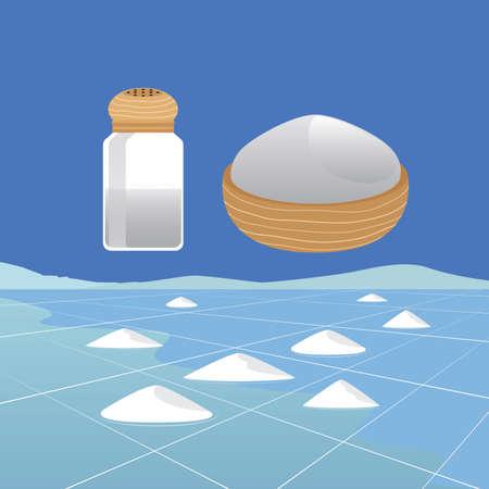 saline: Sea Salt Ingredient and Saline Landscape