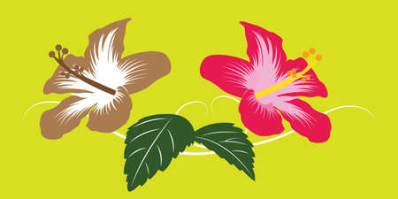 to bloom: Asia Bloom Flower and Green Leaf Vector