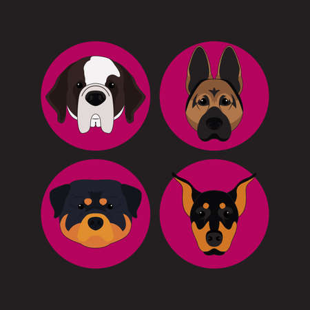 saint bernard: Dog and Puppy Set Doberman Vector and Icon