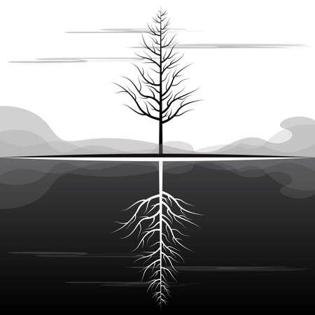 reflection: Dying Tree Reflection Landscape Illustration