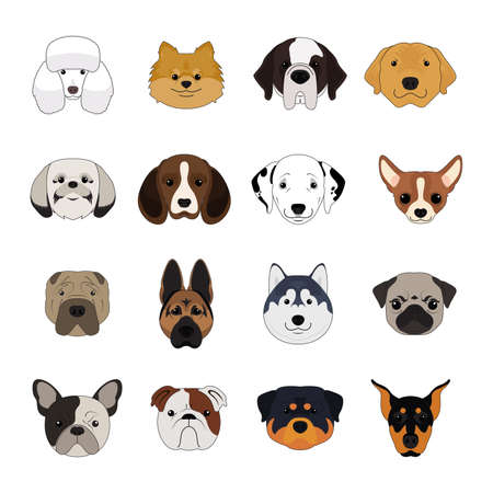Set of Dog and Puppy Face Isolated Vector