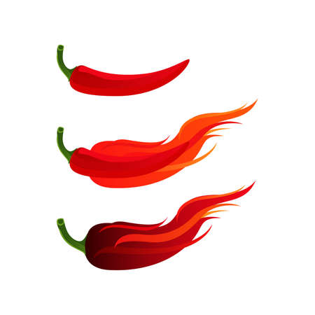 Chilli Hot and Spicy Herb with Fire Burn Vector and Icon Illustration