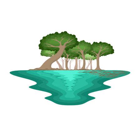 Mangrove Forest Swamp Environment Tropical Landscape Vector