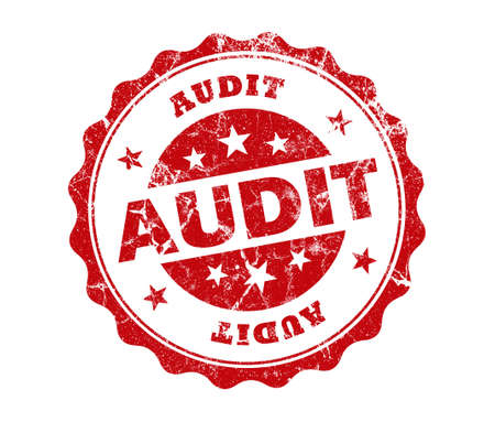 government services: audit stamp on white background