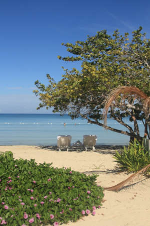 resort beach: Negril tropical resort beach