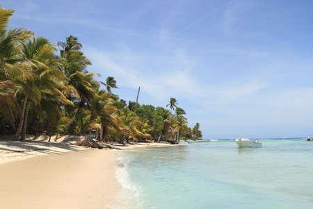 Belle plage des Caraïbes sur l'île de Saona Banque d'images - 56753143