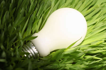 saving electricity: Close-up of a glowing energy saving lightbulb on green grass