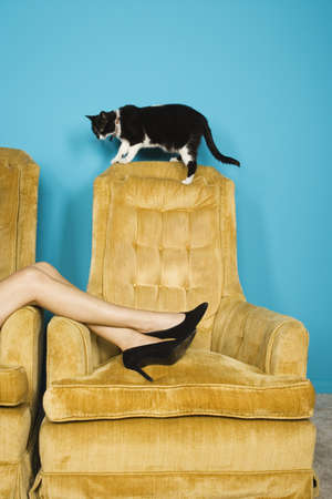 WomanÃs legs in chair with cat