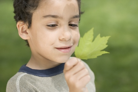 Boy studying green leaf