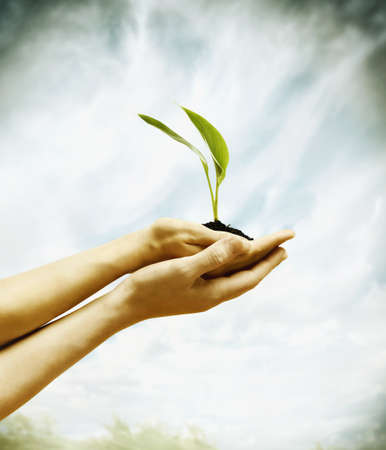 Woman holding a small plant LANG_EVOIMAGES