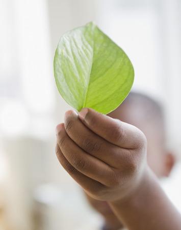 Black boy holding green leaf