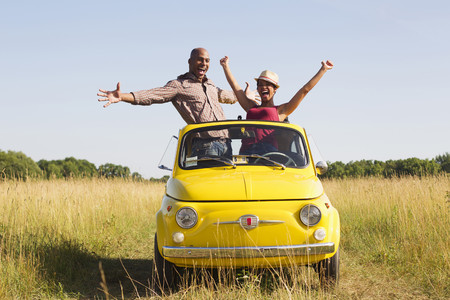 Couple standing in car sun roof in field