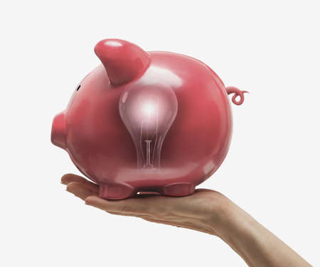 Light bulb reflected in piggy bank LANG_EVOIMAGES