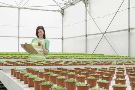 Caucasian woman examining plants in greenhouse