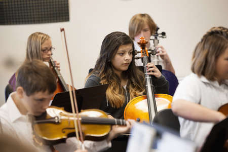 Students playing string instruments in music class LANG_EVOIMAGES