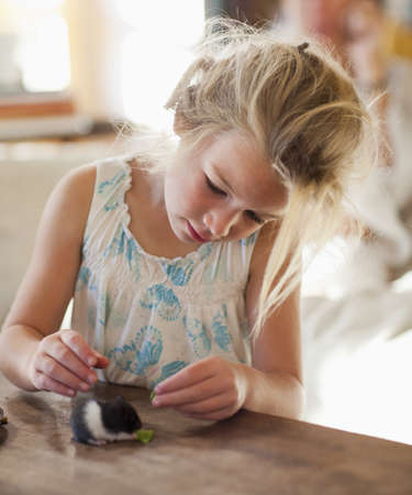 Caucasian girl feeding pet hamster